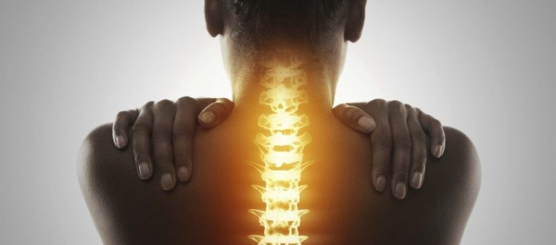 Putting your spine on the line: how core stability improves better backs